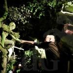 YVON HOLLANDER – Olanda -Omul padurii